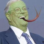 Koch snake - CrabDiving