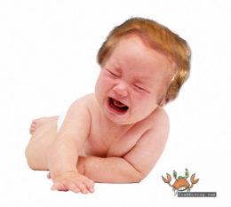 Trump tantrum - CrabDiving