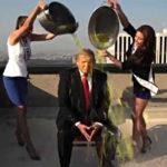 trump pee tape dossier testimony